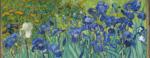 Iris, Vincent van Gogh, 1889