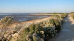 Accueil naturaliste sur le sentier du littoral à la Pointe du Teich Le Teich