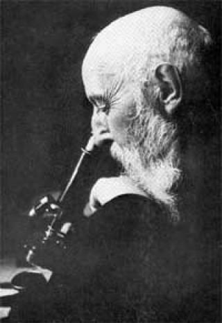 Gerhard Amauer Hansen