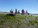 Les coulisses du Bassin Lanton