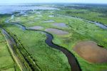 Une balade à pied dans le Delta Le Teich