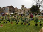 43ème foire aux plantes La Passiflore Vertheuil   2020-04-05