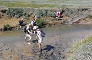 Aventure en baie d'Authie Fort-Mahon-Plage