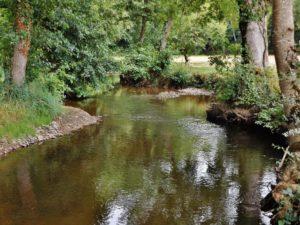 Balade pédestre à la découverte des étangs de Longpré Longpré-les-Corps-Saints