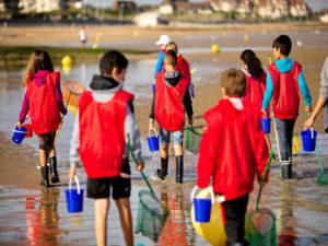 Initiation pêche à pied (pour les 7-12 ans) Cabourg