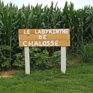 Nocturne au labyrinthe de Chalosse Gaujacq   2021-07-17