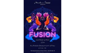 Report: Spectacle Fusion Pau