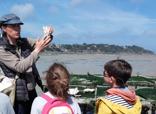 Sortie nature : Au cœur des parcs à huîtres Cancale