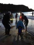 Sortie nature : Pêche aux lançons Cancale