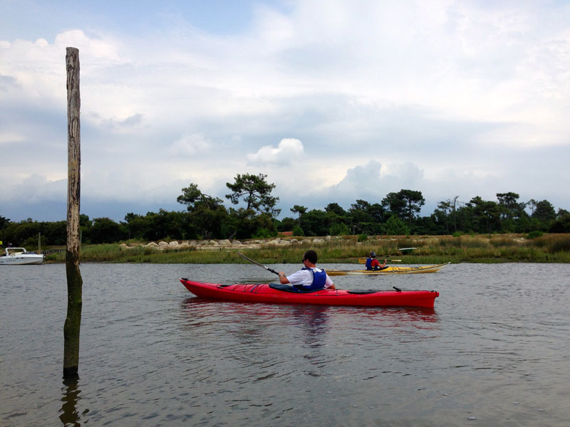 Balade naturaliste en kayak de mer Lanton