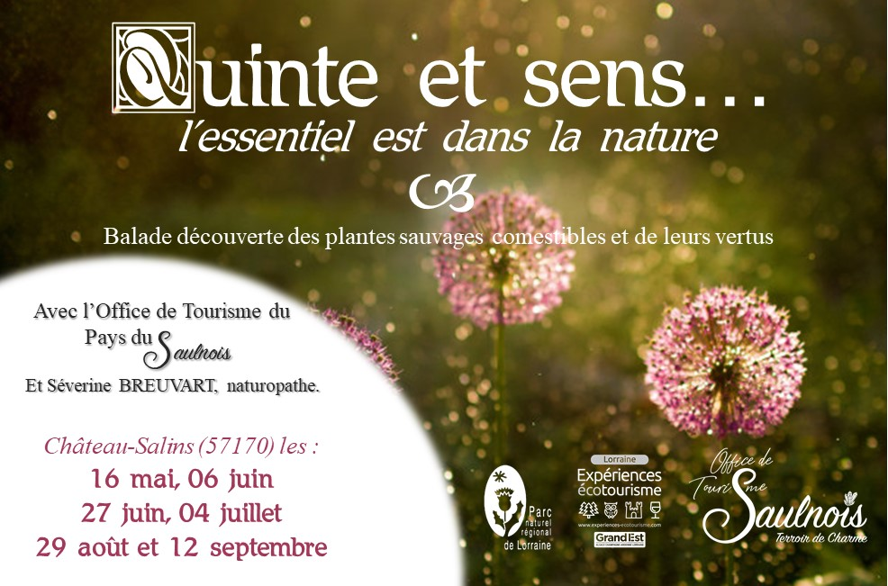 BALADE QUINTE ET SENS Château-Salins