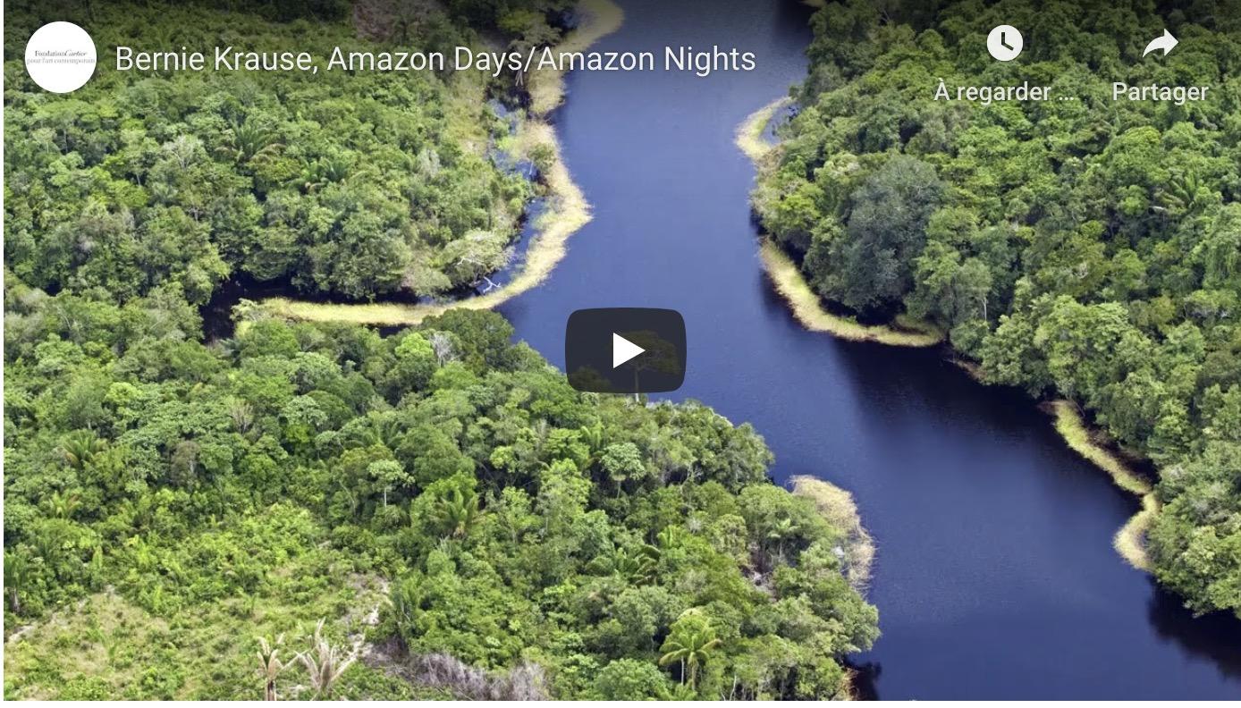 PLONGEZ AU COEUR DE L'AMAZONIE AVEC BERNIE KRAUSE