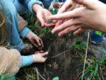 Atelier pratique de Jardinage Maison du Jardinage - Pôle ressource Jardinage Urbain