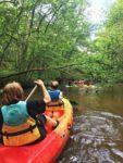 Balade en canoë : le Ciron au fil de l'eau Bommes