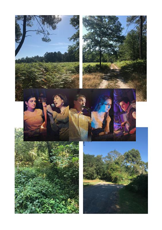 Balade naturaliste et musicale : découverte de la forêt à travers les temps Roaillan