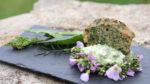 Découverte des plantes sauvages comestibles Saint-Benoît-la-Forêt
