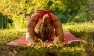 Gym douce à l'ombre des grands hêtres ! Renforcement musculaire tout doux dans un site d'exception... la forêt de Retz Villers-Cotterêts