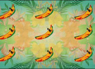 CONKARAH banana