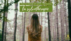 Séance de Sylvothérapie en forêt de Fontainebleau Forêt de Fontainebleau