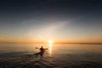 Sortie crépusculaire en kayak Le Teich
