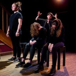 Stage de théâtre pour les enfants et les adolescents Théâtre la Ruche - Le Petit Théâtre de Viarme