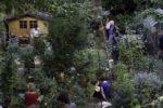 Végétalisation participative Maison du Jardinage - Pôle ressource Jardinage Urbain