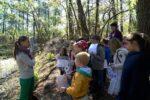 Sortie nature les aventuriers de la forêt Andernos-les-Bains