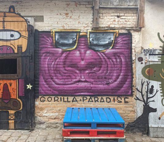 Crazy Factory x Tarek & Lele