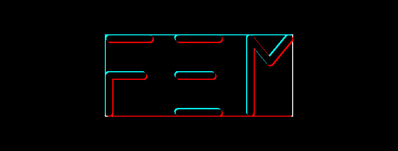 F.E.M