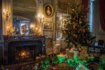 Noël au Château La Bussière Loiret