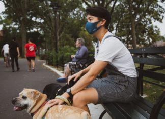 Pett sitting, sites et applications de garde d'animaux de compagnie