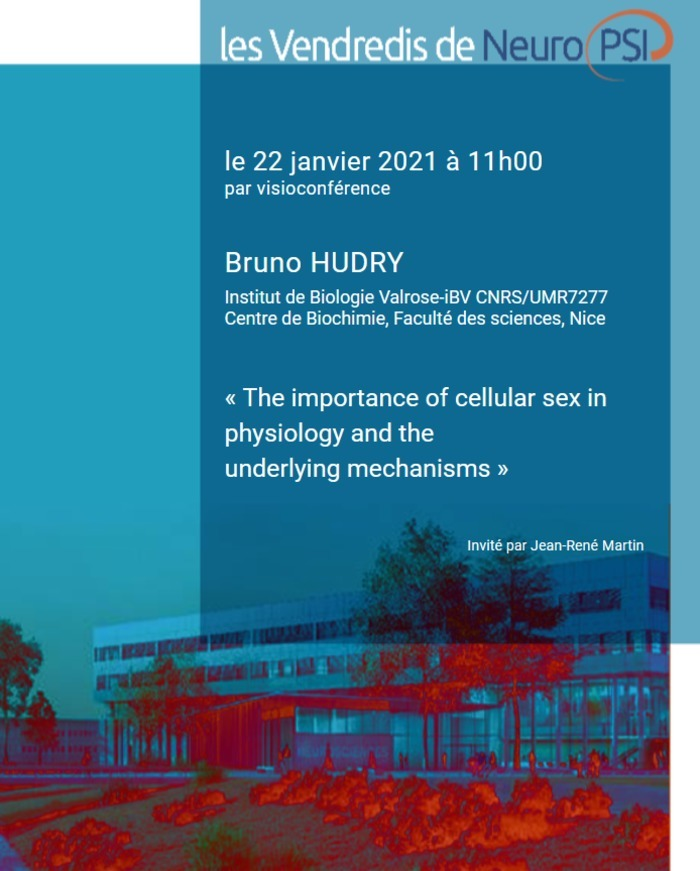 The importance of cellular sex in physiology and the underlying mechanisms CNRS Institut des Neurosciences Paris-Saclay
