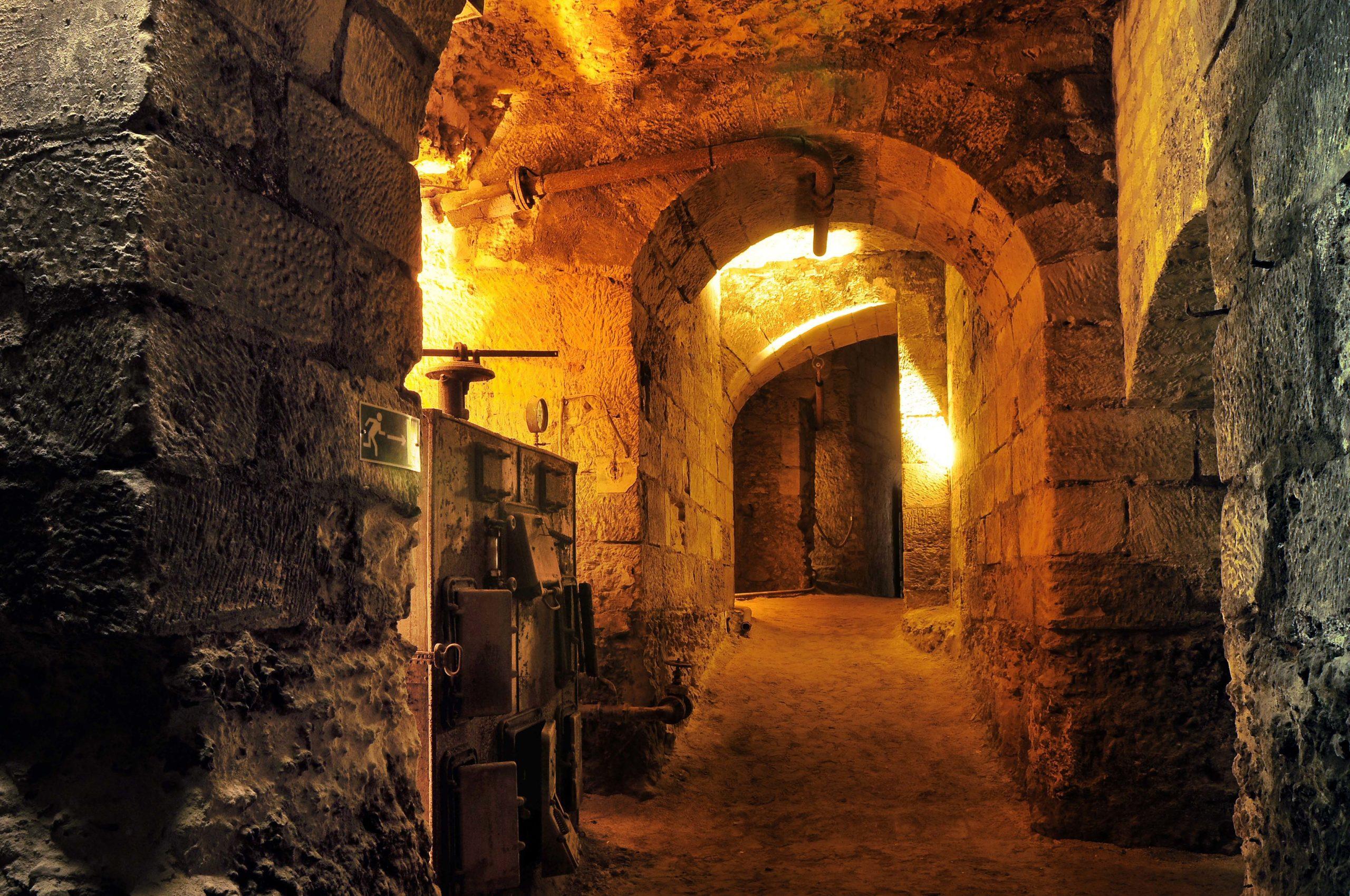 Parcourez les coulisses de l'Histoire au château Royal d'Amboise Amboise   2021-07-07