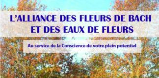Atelier Agrimony : Fleurs de Bach et eaux de fleurs Haut-Mauco