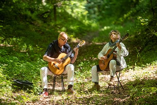 Bain de forêt musical à Vieux-Moulin Vieux-Moulin