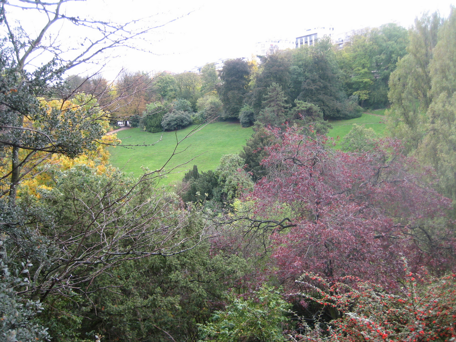 naissance du jardin public sous Napoléon III Maison Paris Nature Paris