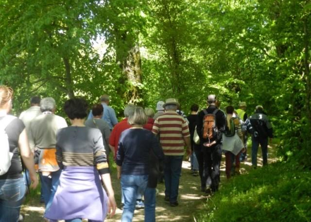 Randonnée historique W3-Quartier Général Allemand à Saint Rimay Saint-Rimay Loir-et-Cher