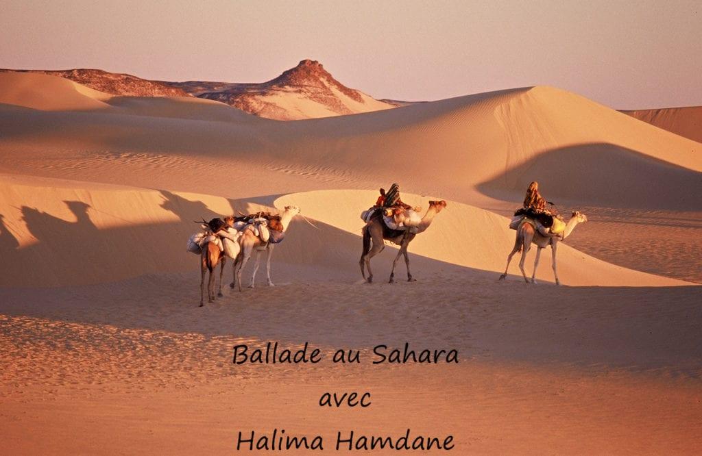 Une ballade au Sahara Institut des Cultures d'Islam - espace Léon Paris