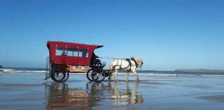 chevaux mer saint-malo