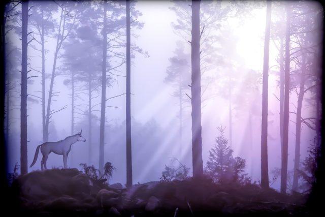Les Nuits de la Forêt - Cernnunos