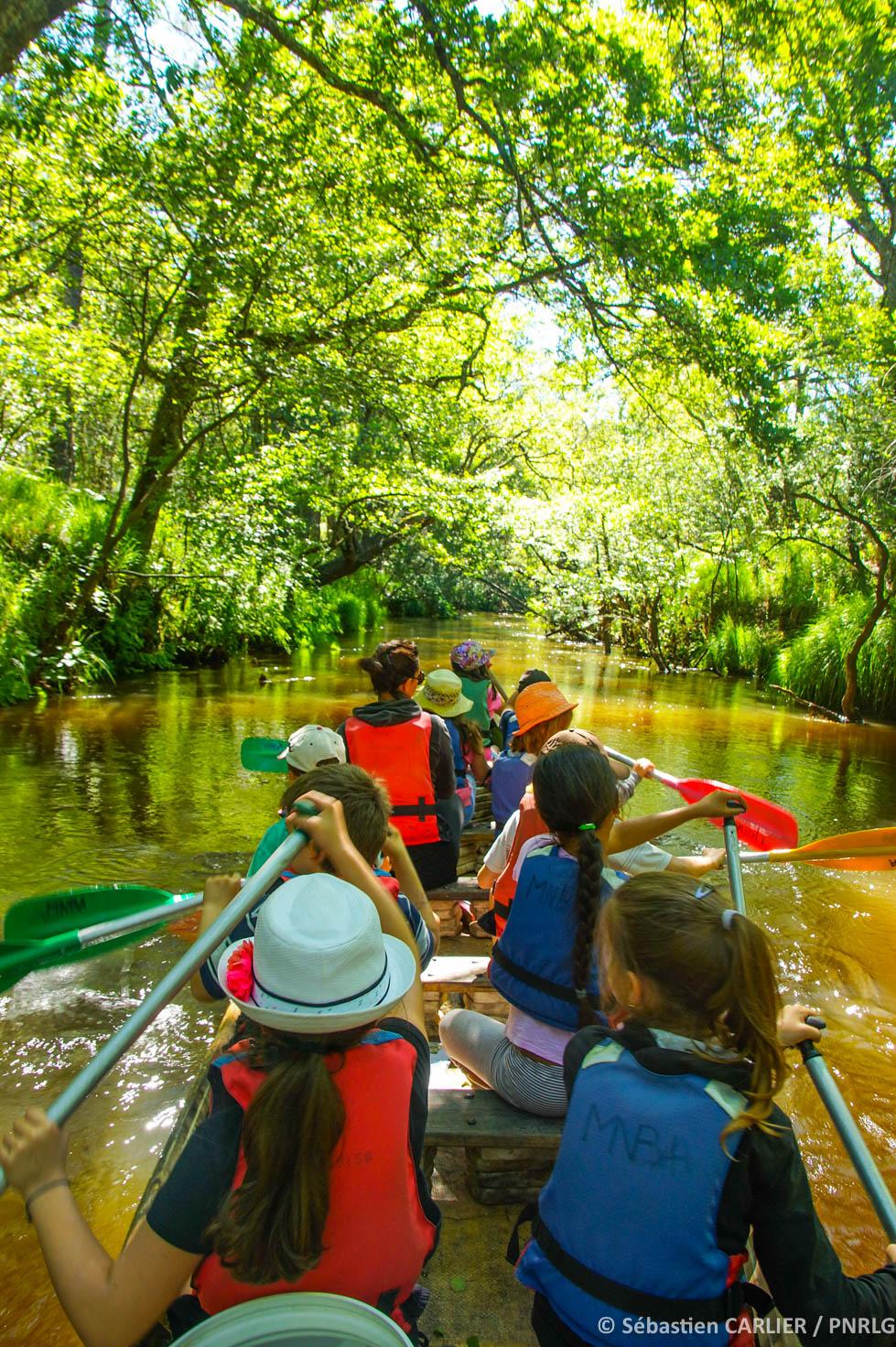 Balade en canoë à 10 places Belin-Béliet