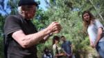 Découvrir la forêt La Teste-de-Buch