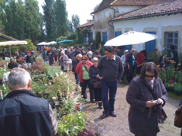 Foire aux plantes originales  de Gaujacq Gaujacq