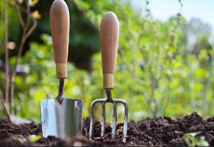 Plantation des annuelles Maison du Jardinage - Pôle ressource Jardinage Urbain Paris