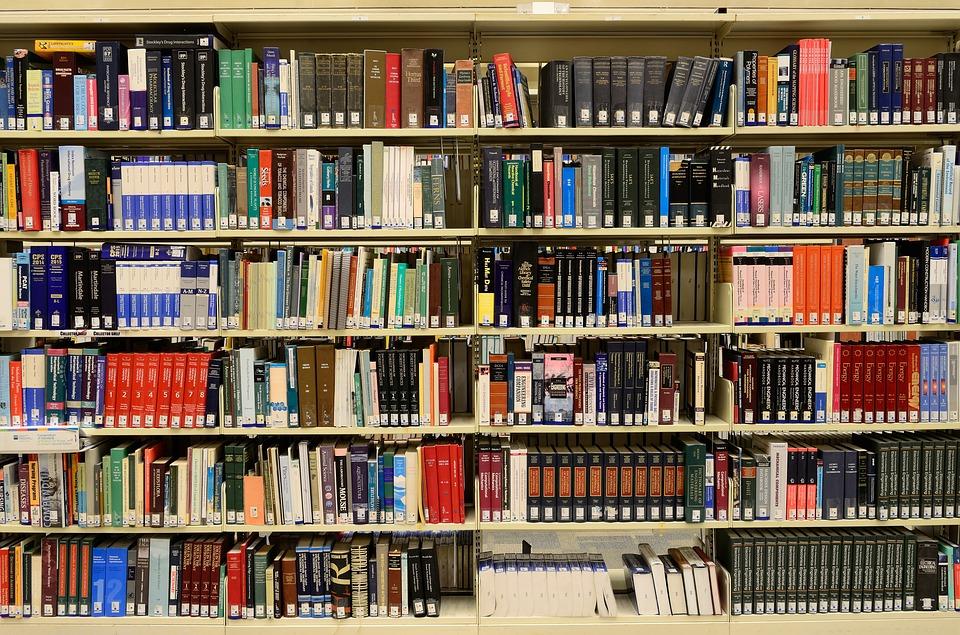 Bibliothèque Bénesse-Maremne