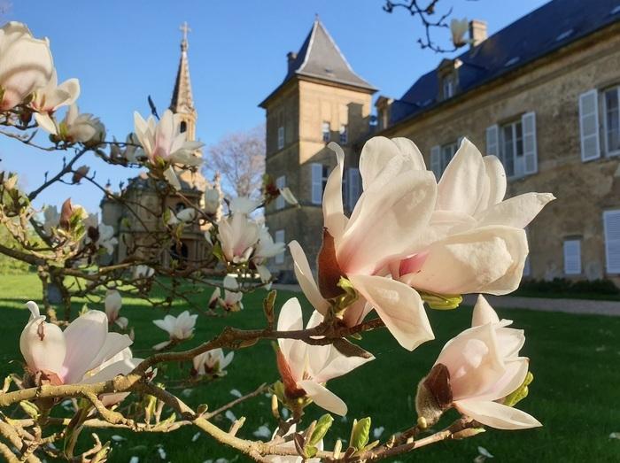 Château de Preisch Basse-Rentgen