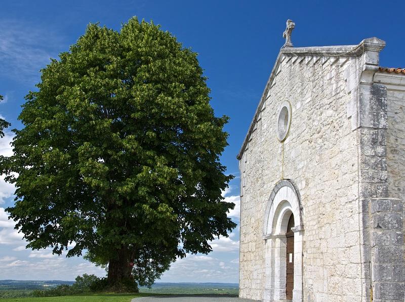 Eglise Saint-Mandé-et-Notre-Dame Brantôme en Périgord