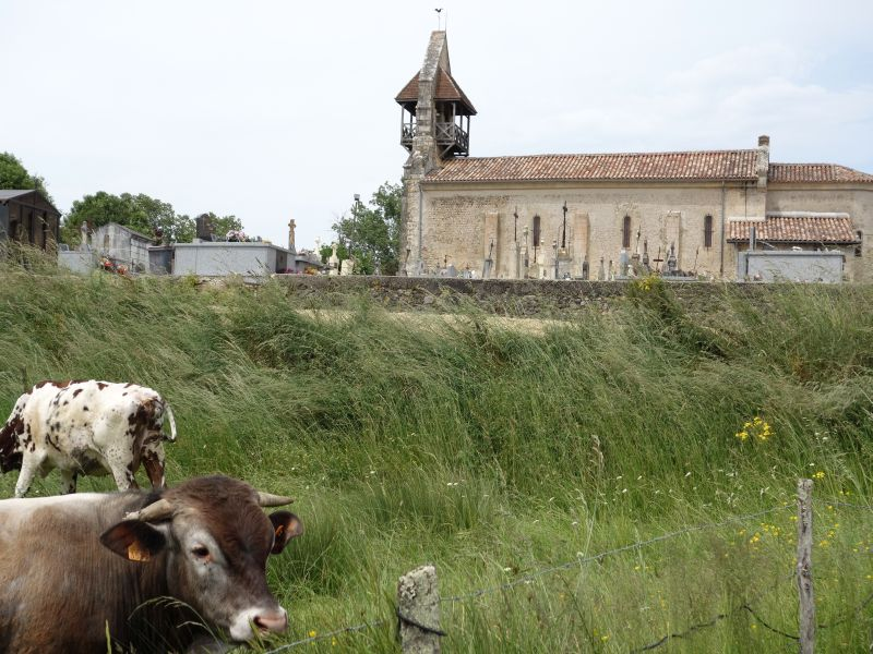 Eglise Saint-Martin de Cazats Cazats