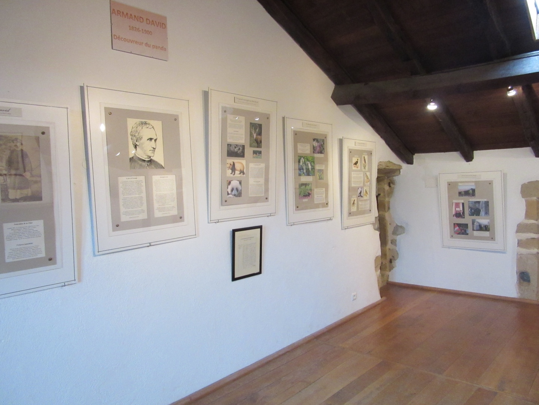 Exposition Armand David Espelette