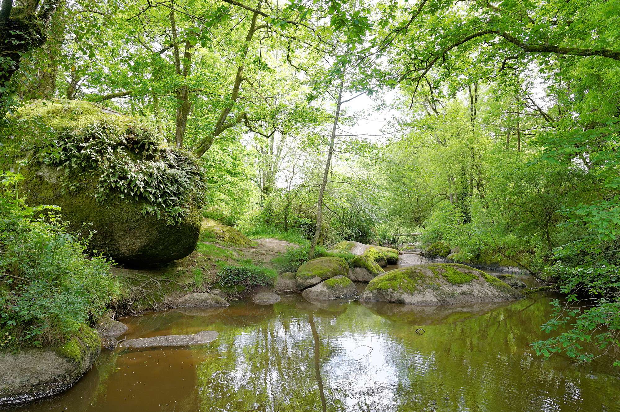 Jardin des Chirons - Rocher Branlant Largeasse
